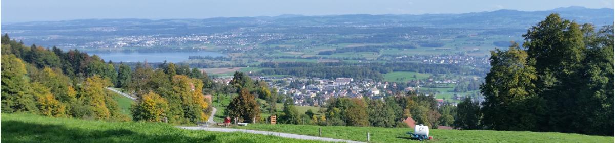 Blick von der Hochwacht Richtung Egg und Greifensee